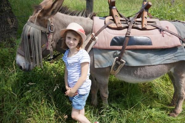 rando bougre dane  Randonnée avec un âne et des enfants en Bourgogne