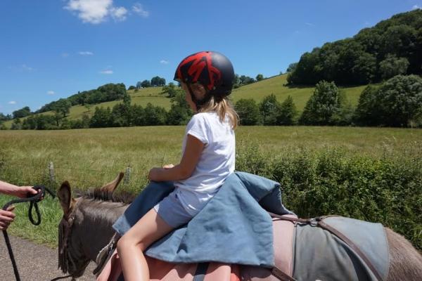 rando bougres dane  Randonnée avec un âne et des enfants en Bourgogne