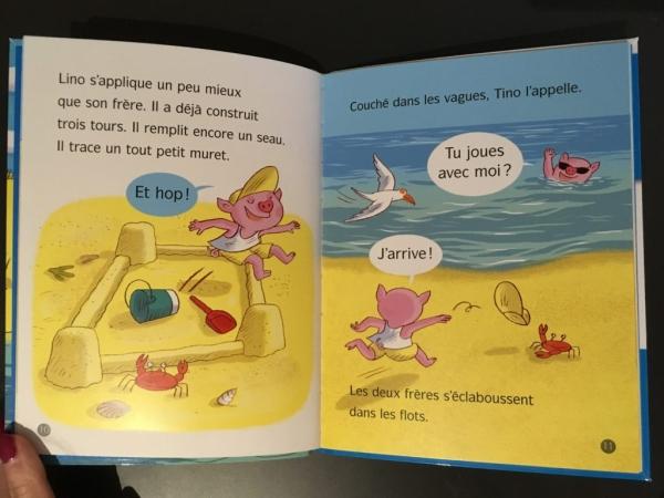 E41D7DEF 1F40 445D 804D 767D254B3B69 1024x768  Une sélection de livre pour les enfants au CP