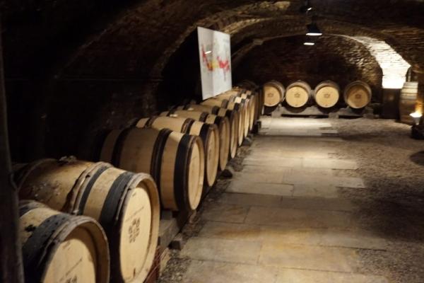3C9B52B6 AB0E 4C06 8243 A65DE6D95851 1024x684  Visite des caves du Château de Meursault