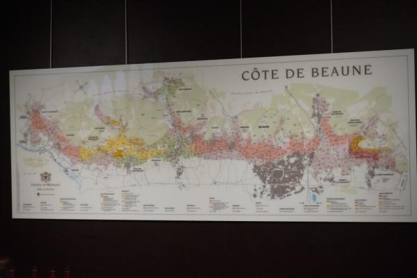 CCD9DA53 2952 4646 B7FB 6E9AECDCEBC1 1024x684  Visite des caves du Château de Meursault