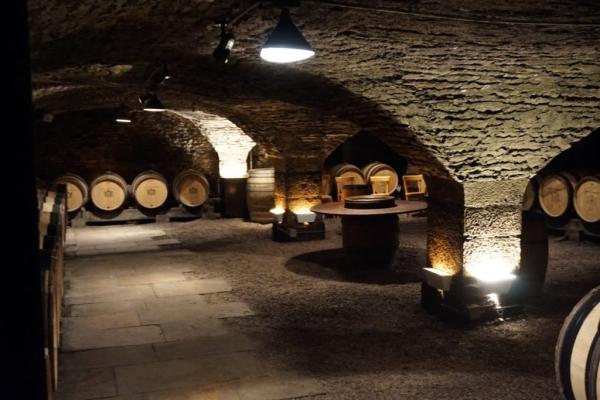 CD090258 C97C 43FB 99E5 BA3A9E39DE93 1024x684  Visite des caves du Château de Meursault