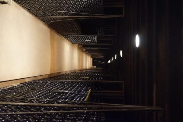 FA39354B 4BB4 4E7F 8FD2 95AC31C67CA7 1024x684  Visite des caves du Château de Meursault