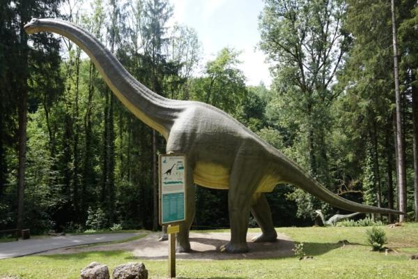 83D4AD83 40FA 4DB5 A642 5024FF8D36A7 1024x684  Une journée en famille au parc Dino Zoo