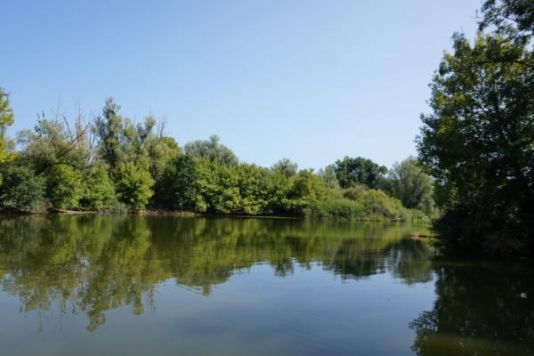 6766FCD8 9A6D 450E 8257 835731E423AB 1024x684  A Louhans retour sur notre petite balade en bateau  sur la Seille – Happy Bourgogne
